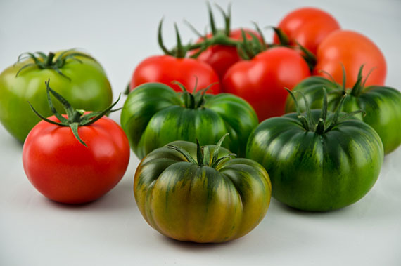 Caparros Tomaten, RAF, Tigre