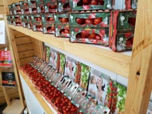 Keuthmann Fruit Logistica (9)